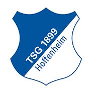 Hoffenheim crest