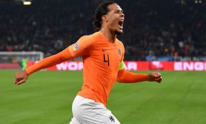 Virgil van Dijk celebrates for Netherlands