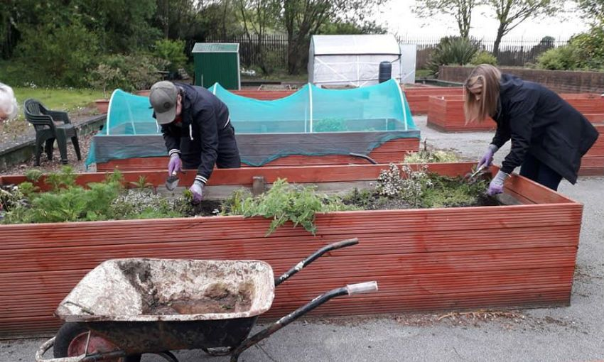 LFC volunteers lend a hand at local community garden